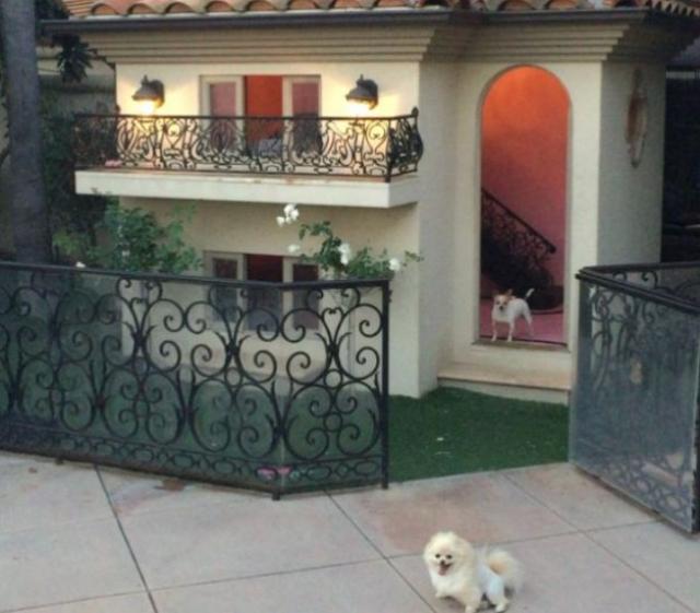 Так, в 2009 году она купила домик для собак стоимостью $ 325 000.