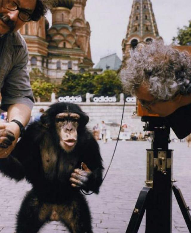 5. Восторг от новой работы. В этой серии снимков, сделанных в 1998 году Комар и Меламид задавались вопросом о роли человеческой расы на земле.