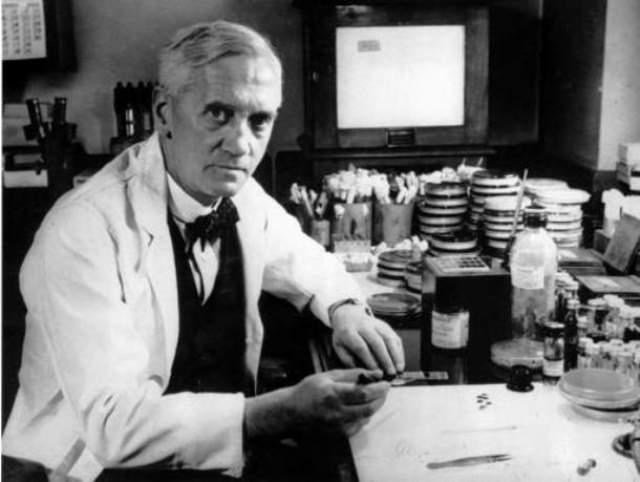 Открытие пенициллина Александр Флеминг, шотландский биолог, фармаколог и ботаник, не очень то заботился о гигиене на своем рабочем месте.