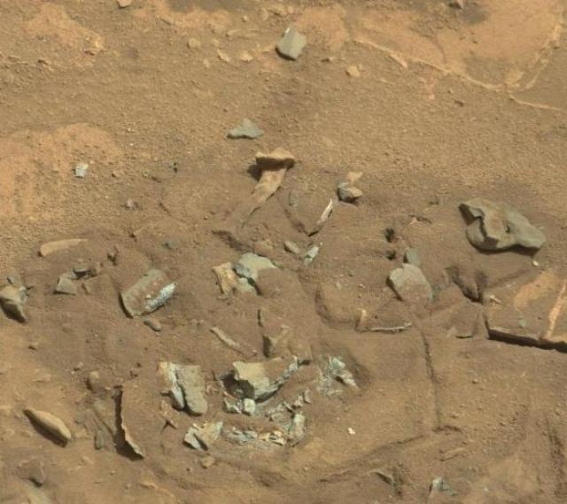 Сенсационная находка - подобие бедренной кости - была обнаружена марсоходом Curiosity 14 августа 2014 года.