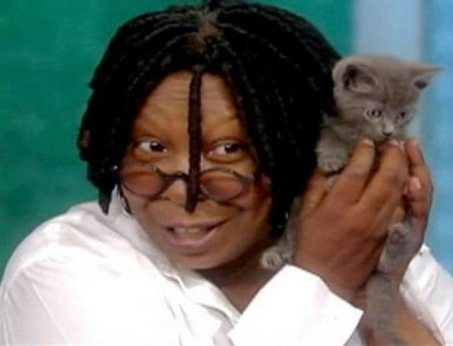 Вупи Голдберг. У оскароносной актрисы не так давно появился маленький друг - 2-месячный котенок с тяжелой судьбой: малыш оказался в приюте после того, как его выбросили из движущейся машины на мосту Верразано в Нью-Йорке.