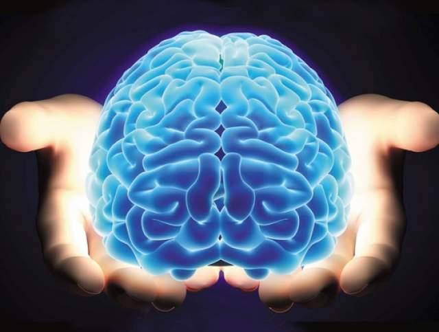 Человеческий мозг питается сам собой, когда человек садится на экстремальную диету или просто недостаточно ест. Это будет последней попыткой избежать голодной смерти.
