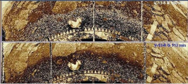 """На фото показаны последовательные панорамы: выпадение осадков происходило краткими интенсивными порывами, после которых площадь выпавших осадков уменьшилась не менее чем наполовину за следующие полчаса, а грунт под """"растаявшей"""" массой потемнел, подобно увлажненной земной почве."""
