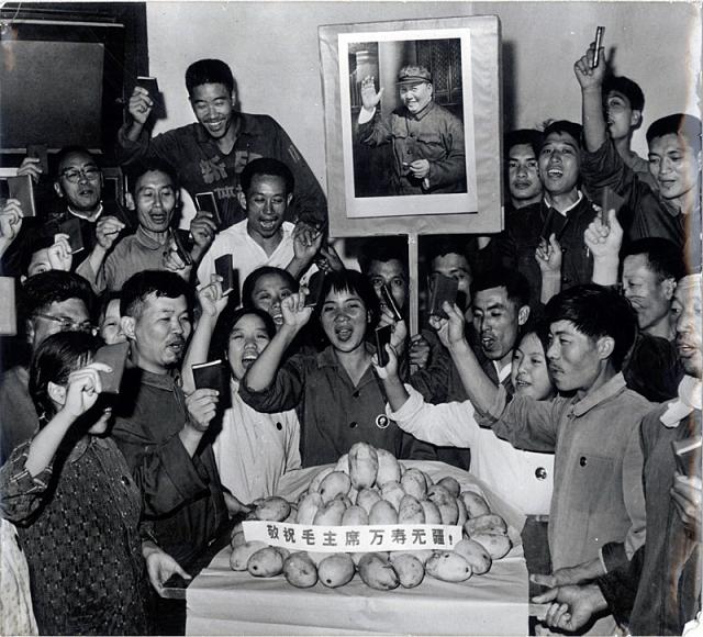 Когда Китай посетил министр иностранных дел Пакистана и подарил Мао Цзедуну коробку манго, а тот отправил ее рабочим.