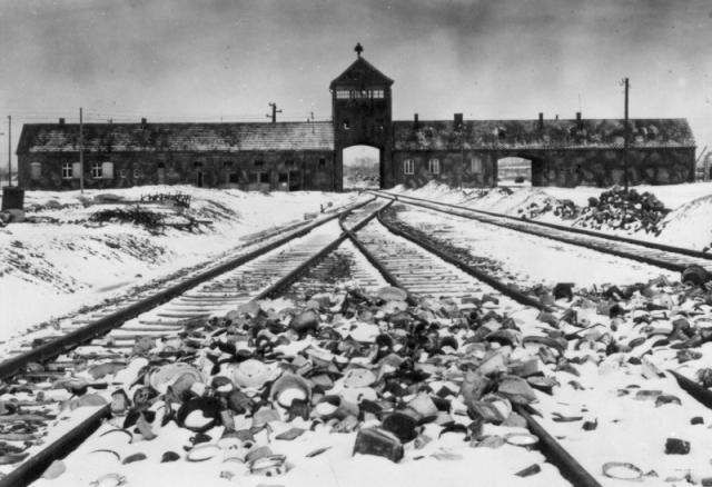 Начиная с 1940 года, из оккупированных территорий и Германии в концентрационный лагерь Освенцим прибывало до 10 эшелонов с людьми в день. В эшелоне было 40-50, а иногда и более вагонов.