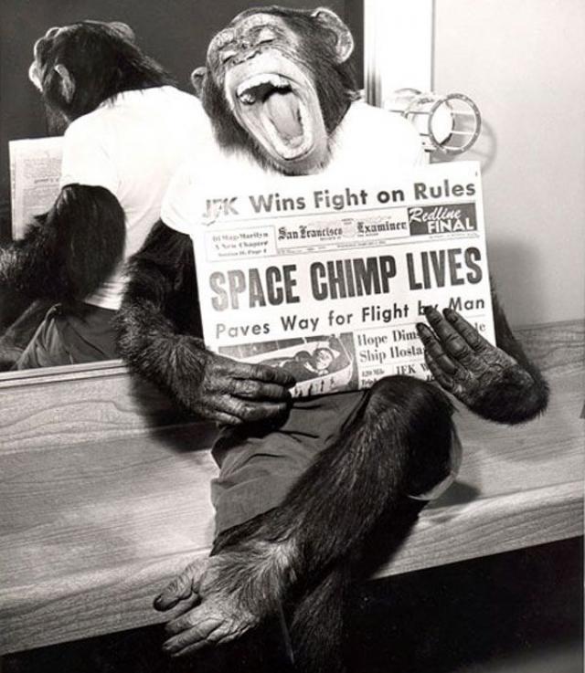 После космического полета Хэм 17 лет жил в Смитсоновском зоопарке в Вашингтоне, а затем в зоопарке Северной Каролины. Он периодически появлялся на телевидении и снялся в одном фильме. Хэм умер 19 января 1983 года в возрасте 26 лет.
