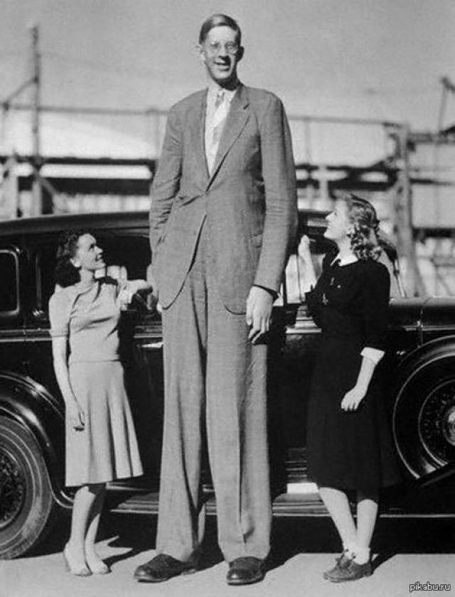 """При этом юноша-великан учился в школе, окончил ее в 18 лет и поступил в университет изучать право. В этом же году он объездил все США с цирком. Его называли """"добрым великаном""""."""