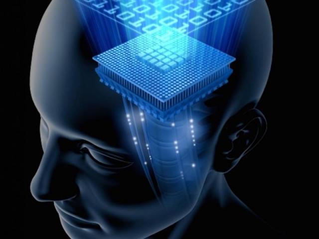 За всю жизнь долговременная память мозга хранит до 1 квадриллиона (1 млн миллиардов) отдельных бит информации.