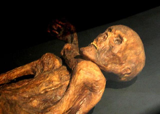Эци. 19 сентября 1991 года немецкие туристы Гельмут и Эрика Симон обнаружили в Тирольских Альпах в долине Эцталь ледяную мумию человека возрастом примерно 5300 лет.
