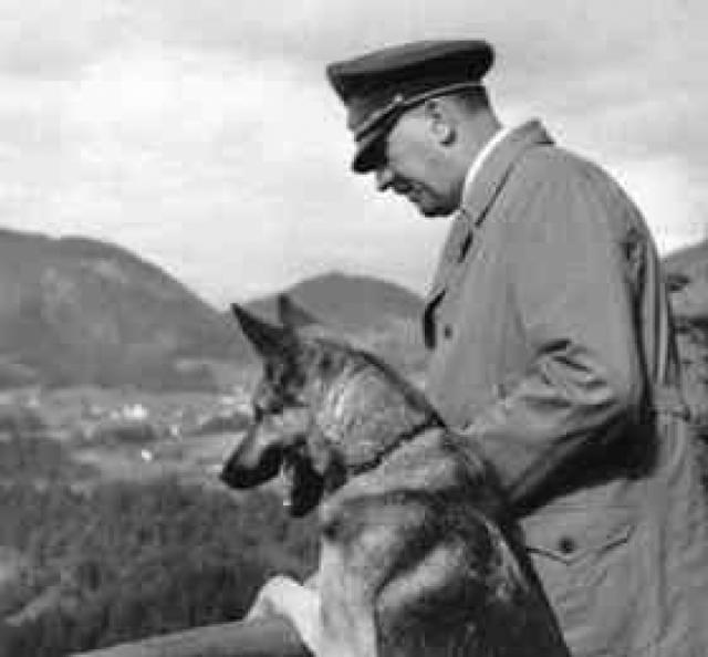 Другая версия (принятая почти всеми историками) гласит: Гитлер и Ева Браун отравились цианистым калием. Перед смертью Гитлер также отравил двух любимых овчарок.