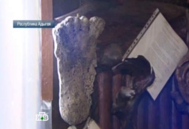 Необычная экспедиция сделала гипсовый слепок обнаруженного следа. Предположительно, рост того, кто оставил этот след - под два метра, а вес - не меньше 200 килограммов. По возвращении спасатели передали гипсовые отпечатки ученым.