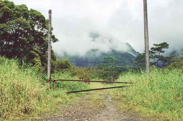 Съемочный период длился с конца лета до конца осени 1992-го года, и за это время команда побывала на Гавайях, Коста Рике, Доминиканской Республике и Калифорнии.
