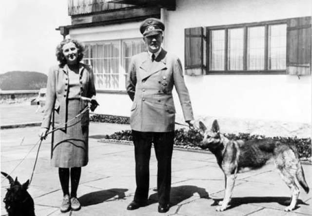 30 апреля 1945 года Гюнше уничтожил трупы фюрера и Евы Браун после того, как они приняли яд. Еще через несколько дней его взяли в плен советские солдаты. Гюнше провел в плену несколько лет.