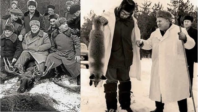 """Еще одной страстью Никиты Сергеевича была охота. Причем, в отличие от многих, он был настоящим и """"профессиональным"""" охотником. Хрущев отлично стрелял и мог убить за один заезд множество животных."""