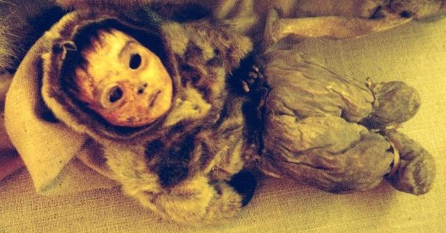 Мумия мальчика из Гренландии. Неподалеку от северного поселения Килакитсок на западном берегу острова, в 1972 году ученые нашил семью мумифицированных предков эскимосов, тела которых сохранились благодаря низким температурам.