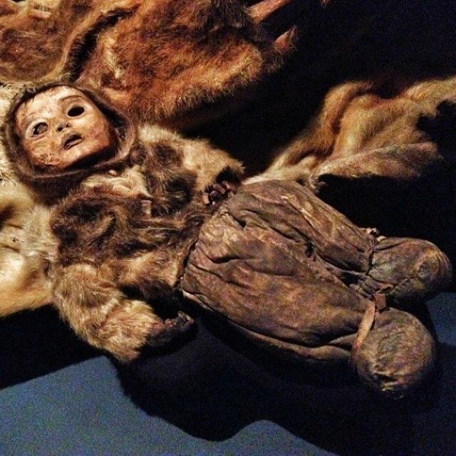 Тело принадлежало годовалому ребенку, который, как заключили антропологи, страдал синдромом Дауна. Мумия, похожая на жуткую куклу, производит неизгладимое впечатление на посетителей Национального музея Гренландии в Нууке.