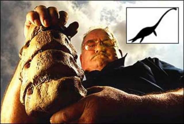 Интерес к чудовищу вновь вспыхнул после недавней находки шотландца Геральд МакСорли, живущего на берегу озера Лох-Несс. Он нашел часть хребта, когда ловил рыбу. В итоге мужчина выкопал несколько позвонков и отвез в Национальный музей Эдинбурга.