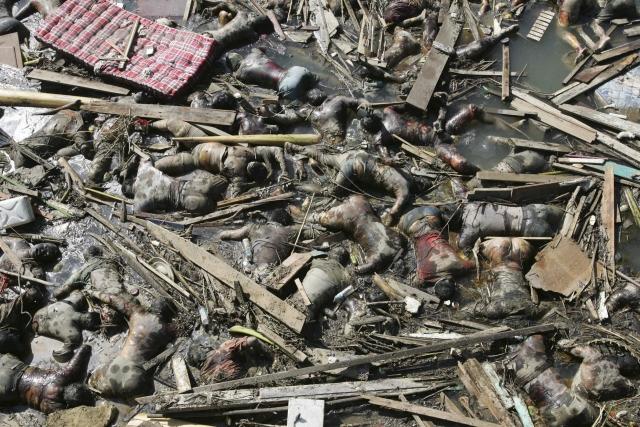 Повсюду виднелись тела людей, остатки свай, вырванных деревьев, расплющенных конструкций.