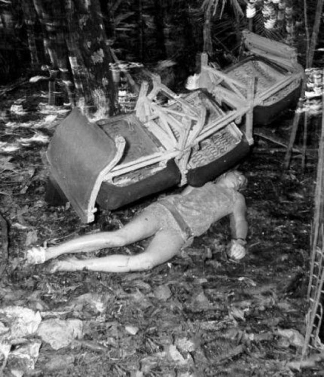 Воздушное судно упало прямо в Перуанские джунгли. После падения самолета Джулиана осталась пристегнутой в своем кресле. Она получила перелом ключицы и многочисленные порезы.