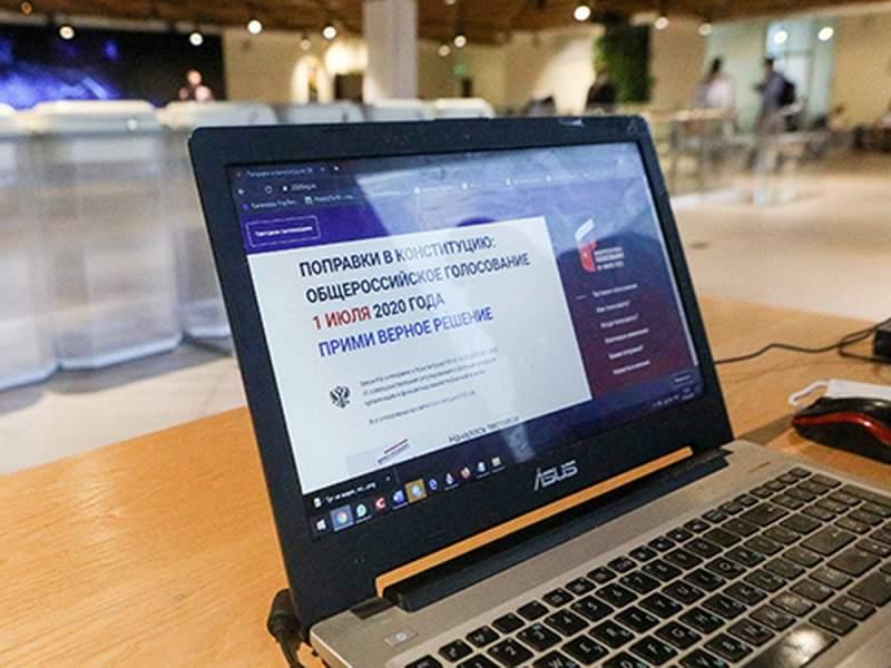 Паспорта голосовавших онлайн по поправкам к Конституции опубликованы в Сети
