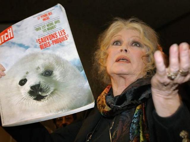 Ей было выдвинуто множество предложений по защите прав животных к правительствам Франции, Китая, ЮАР и России.