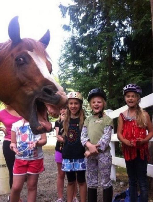 Кто хотел фото с лошадкой?