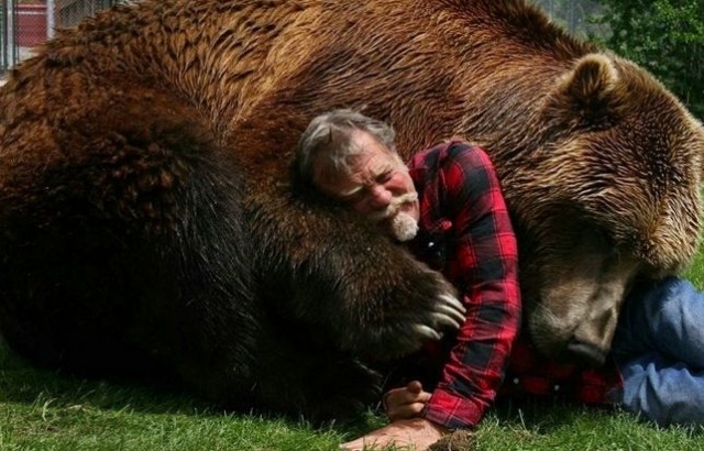 Участие в документальной картине Бреда Питта стало последней работой Барта. Медведь умер по время съемок в возрасте 23 лет.