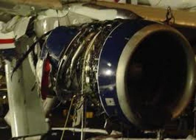 Пассажиры позже вспоминали, что почувствовали сильный удар, некоторые увидели, что что-то серое промелькнуло рядом с самолетом и врезалось в двигатель. Другие заметили огонь.