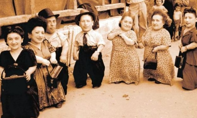 Менгеле также проявлял интерес к физиологическим аномалиям, в частности к карликам. Проводил эксперименты над оказавшейся в Освенциме семьей Овиц - музыкантов-лилипутов из Румынии.