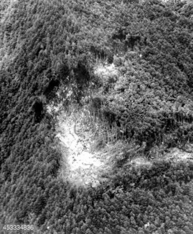 Лайнер перевернулся и на большой скорости врезался в лесистый склон горы Оцутака на высоте 1457 метров в 112 километрах к северо-западу от Токио.