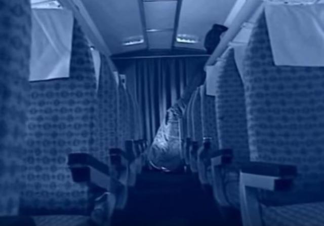 """В самолете было много пустых мест, поэтому Овечкины пересели в хвостовую часть салона. Старшие братья продемонстрировали стюардессам фотографию ансамбля """"Семь Симеонов"""", чтобы убедить их, что они являются артистами."""