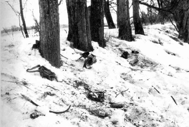 В бою 2 марта погиб 31 советский пограничник, 14 получили ранения. Потери китайской стороны составили 39 человек убитыми.