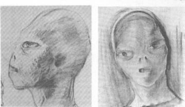 """Хотя они не могли ясно вспомнить, что произошло после (из их памяти просто выпало несколько часов), спустя несколько недель оба одновременно начали жаловаться на пугающие сны, в которых они подвергались каким-то ужасным и причудливым медицинским проверкам со стороны """"серых пришельцев""""."""