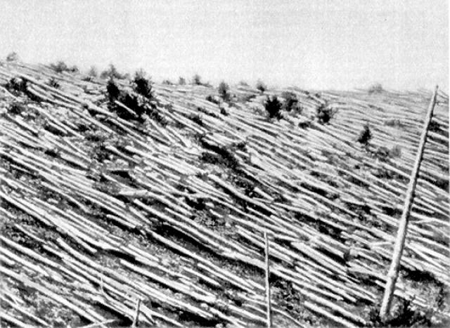 Однако широкого интереса к падению внеземного тела никто в тот период не проявил. Научное исследование тунгусского феномена началось лишь в 1920-х годах.