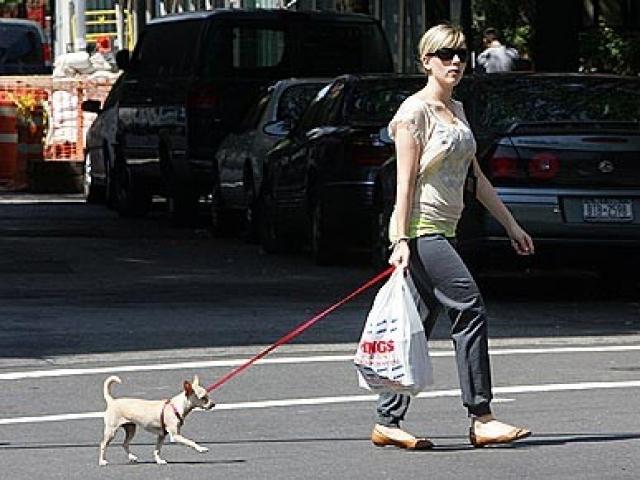 У Скарлетт есть кот по имени Трупер и собака Мэгги.