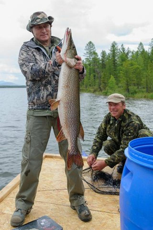 Так, отдыхая в июле 2013 года на озере в Туве В.В. поймал на блесну 21-килограммовую щуку.