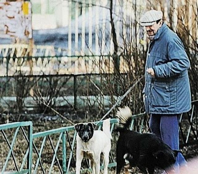 """Однажды подобрал полуживую бездомную овчарку, выходил и назвал Мальчиком. Пес любил спать на своем хозяине. А когда Вицину звонили, супруга отвечала: """"Он не может подойти. На нем спит Мальчик. Бедная собака так настрадалась... Пусть теперь отдохнет""""."""