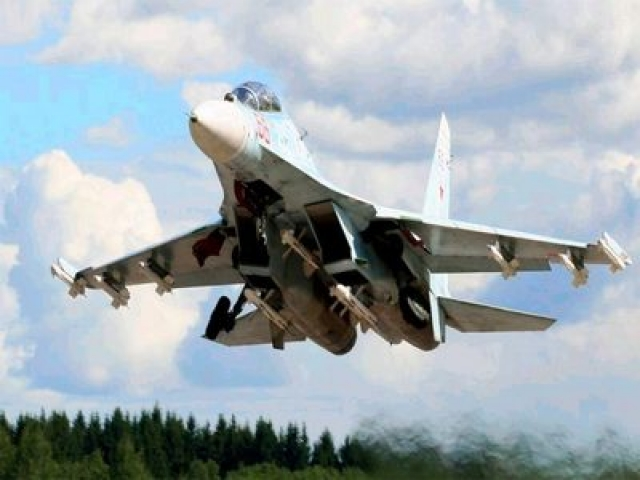 Скниловская трагедия (27 июля 2002 года). Су-27УБ борт 42 под управлением двух пилотов - 45-летнего командира В. А. Топонаря и 49-летнего второго пилота Ю. М. Егорова - выполнял фигуру высшего пилотажа.