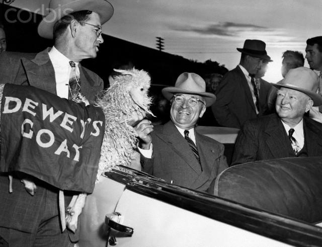 А у еще одного президента США, Гарри Трумана , была ручная коза, которая паслась на лужайке перед Белым Домом.