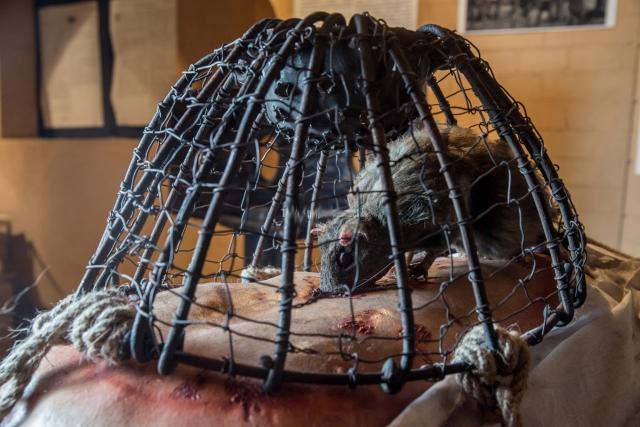 Дно клеток выдвигалось, а на клетки сверху помещаются раскаленные угли, чтобы напугать крыс. Спасаясь от жара горячих углей, крысы прогрызают себе путь через плоть жертвы.