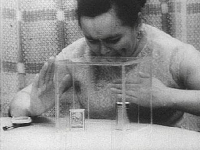 В начале 1960-х годов, она прославилась на весь Советский Союз как Нинель Кулагина - экстрасенс и обладатель других паранормальных способностей. Она могла лечить людей силой мысли, определять цвет прикосновением пальцев, видеть сквозь ткань, что лежит в карманах людей, передвигать предметы на расстоянии и многое другое.