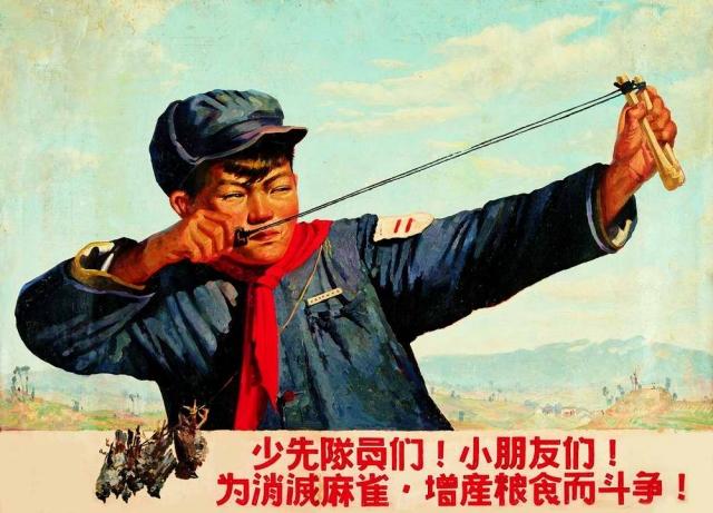 Пропаганда объясняла, что воробьи массово пожирают зерно, принося национальному хозяйству колоссальный убыток.