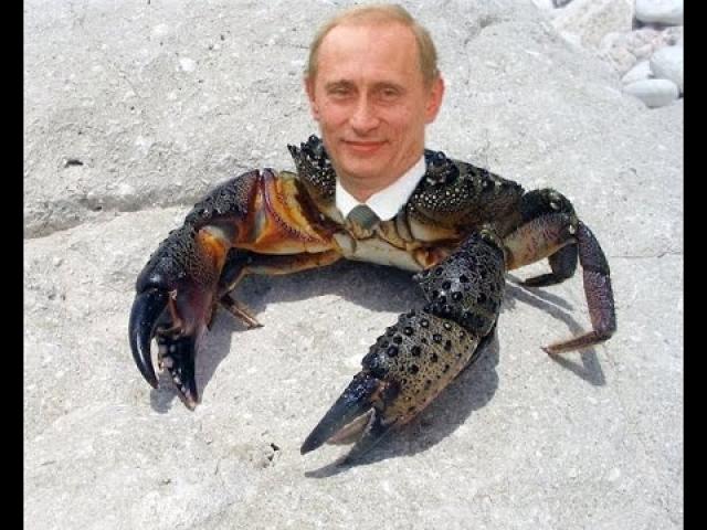 """Несколько лет назад ходило выражение """"Путин - краб"""". Причина в том, что в одном из своих выступлений он сказал, что восемь лет президентства """"пахал, как раб на галерах"""". В народе фраза сжалась до """"краб на галерах"""", а потом и вовсе до """"краб""""."""