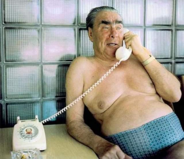 Генеральный секретарь ЦК КПСС Леонид Брежнев в семейных трусах, прислонившийся к типично советской стене из стеклоблоков, как бы олицетворят собой эпоху застоя имени себя.
