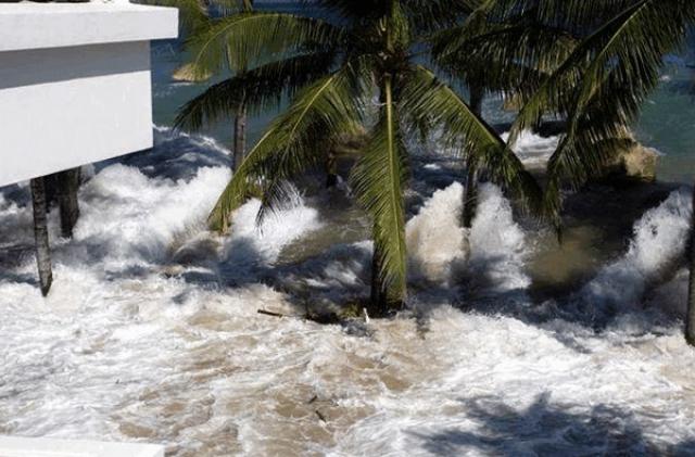 Те, кто были внутри, погибли под обломками или захлебнулись. В некоторых кварталах Мелабоха вода поднялась так, что смывала людей с веранд на верхних этажах. Телеграфные столбы вырывало с корнем. Мощные стены стоявшей неподалеку от моря тюрьмы сложились, как карточный домик. В бурлившем водовороте кружились микроавтобусы, рыбацкие лодки и даже дома.