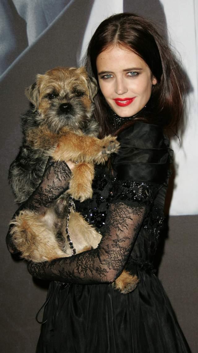 Актриса жалуется, что страдает от вынужденных долгих разлук со своей собакой - ведь не во все поезда, которые ходят по Европе, пускают с животными.