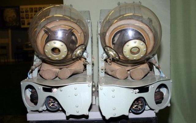 Основной целью эксперимента было исследование влияния факторов космического полета на организм животных и других биологических объектов.