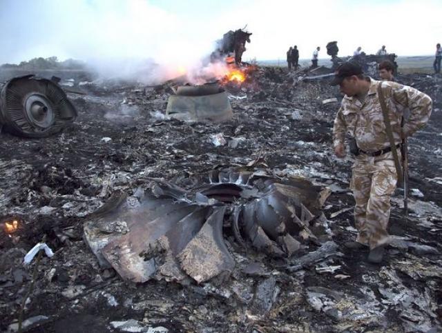 На данный момент настоящая причина крушения неизвестна. Власти Украины уверенно заявляют, что самолет был сбит с земли ополченцами донецкой области.