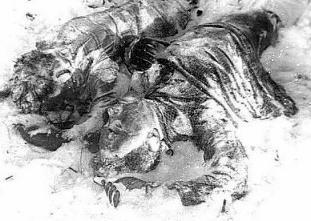 Оба трупа были в одном нижнем белье. Дорошенко лежал на животе, видимо упавший на сук дерева. Кривонищенко лежал на спине, у него отсутствовал кончик носа. Вокруг тел были накиданы мелкие вещи. На руках у обоих были многочисленные ушибы и ссадины, а внутренние органы переполнены кровью.