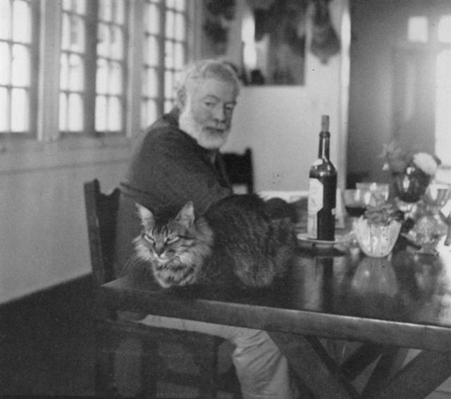 При жизни в его доме обитало 150 котов и кошек разных пород.